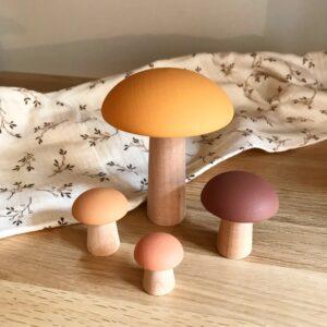 mushroom autum lifestyle