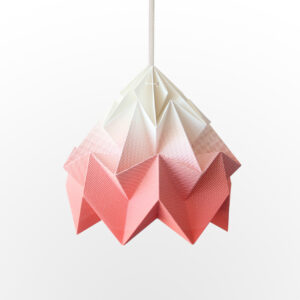 Lighting Moth Origami Lamp